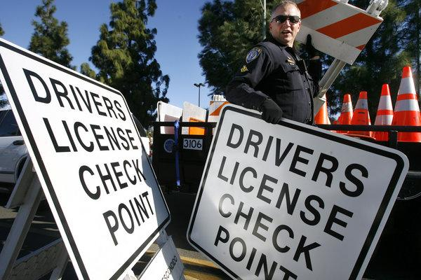 Escondido police Officer David Daccilli sets up a driver's license checkpoint on Escondido Boulevard in Escondido on Monday. (Photo by Hayne Palmour IV - staff photographer)