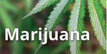Marijuana impairs driving